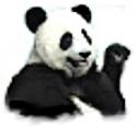 My Pandamonium