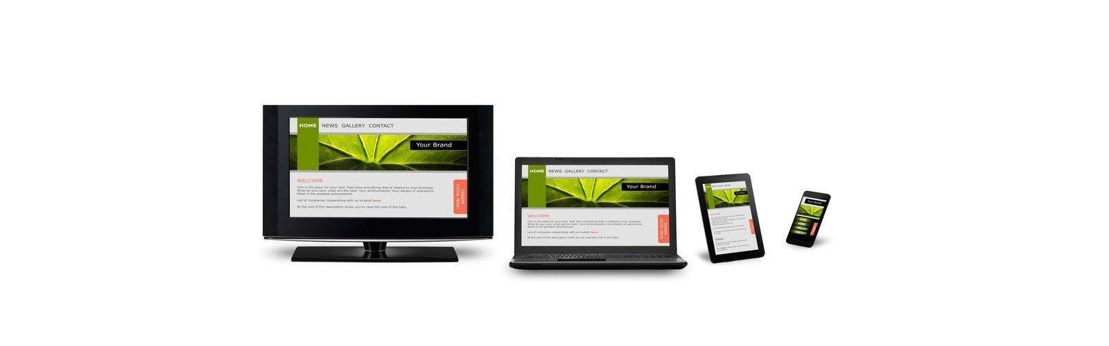 DFW Business Websites - SEO Digital Marketing, Mobile Responsive Websites